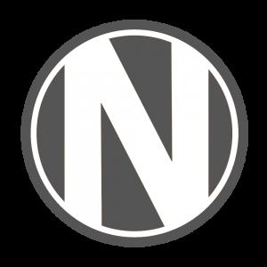 Nett Logo Gray